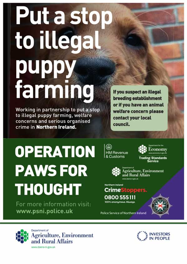 Put a stop to illegal puppy farming, dog in poster, in partnership with Department for Environment, Food & Rural Affairs