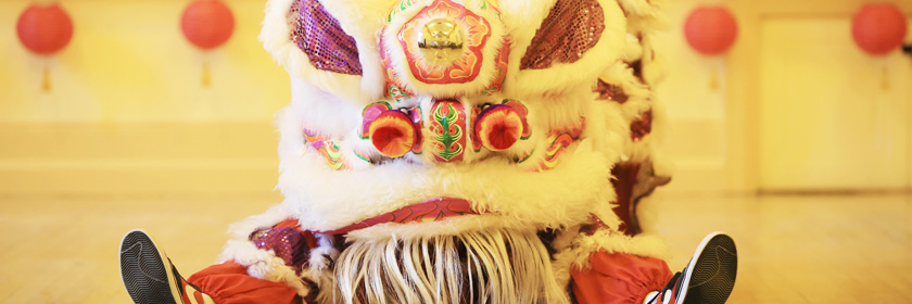 Photograph of a Chinese Dragon celebrating the Lunar New Year