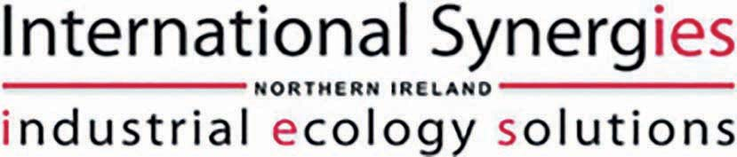 International Synergies Logo