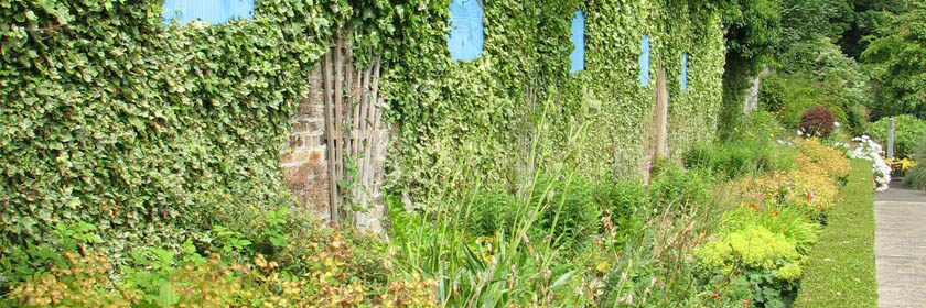 Photograph from inside the Walled Garden at Carnfunnock