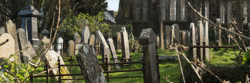 Photograph of a cemetery