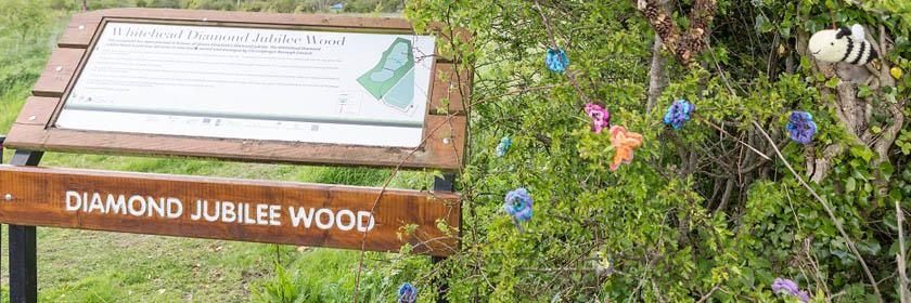 Photograph of entrance to Diamond Jubilee Wood