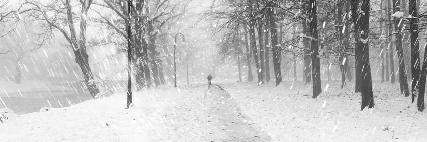 Photograph of snowfall