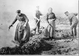Photo of Workers at The Kelp Store at Carnlough Harbour