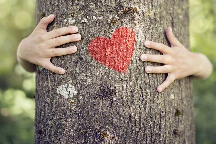 Celebrate Valentine's Day! image