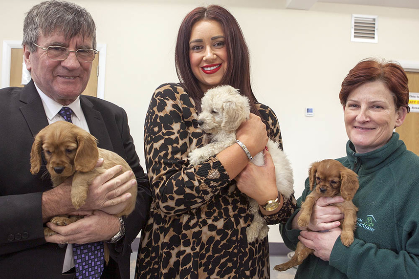 It's puppy love as Mayor praises those involved in Larne rescue image