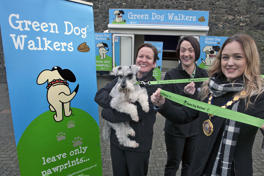 Green Dog Walkers Initiative launched as Council takes the lead on tackling problem dog fouling image